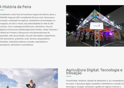 Screenshot site Fenagri 2021 a feira