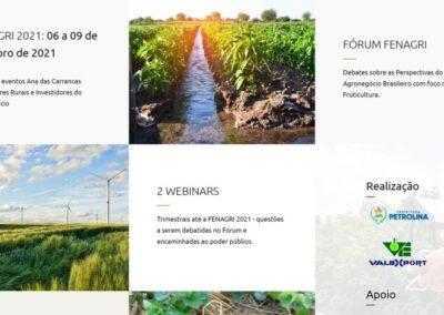 Screenshot site Fenagri 2021 institucional